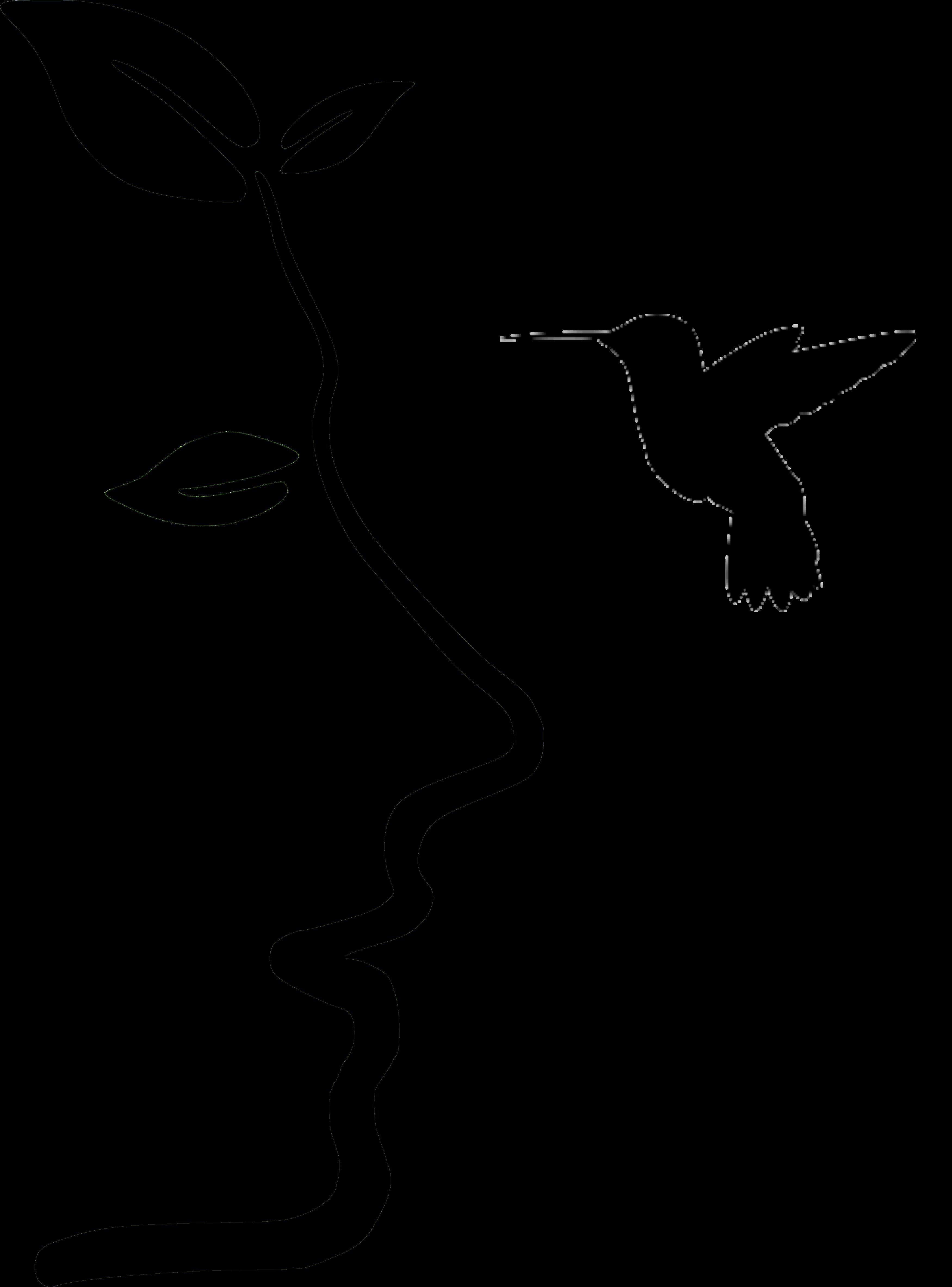 Savonnerie du colibri